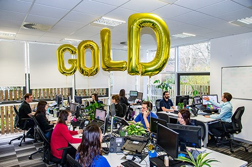 ecosurety celebrates winning the Investors in People Gold award in the office